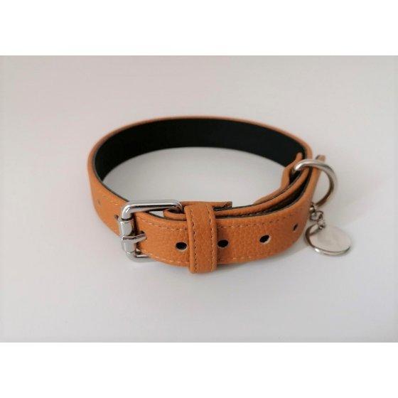 Dog Collar Amber