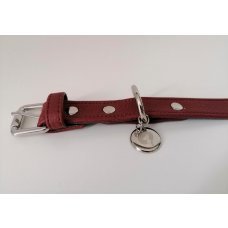 Dog Collar Sienna